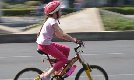 Bicajozós-Naplás tavas